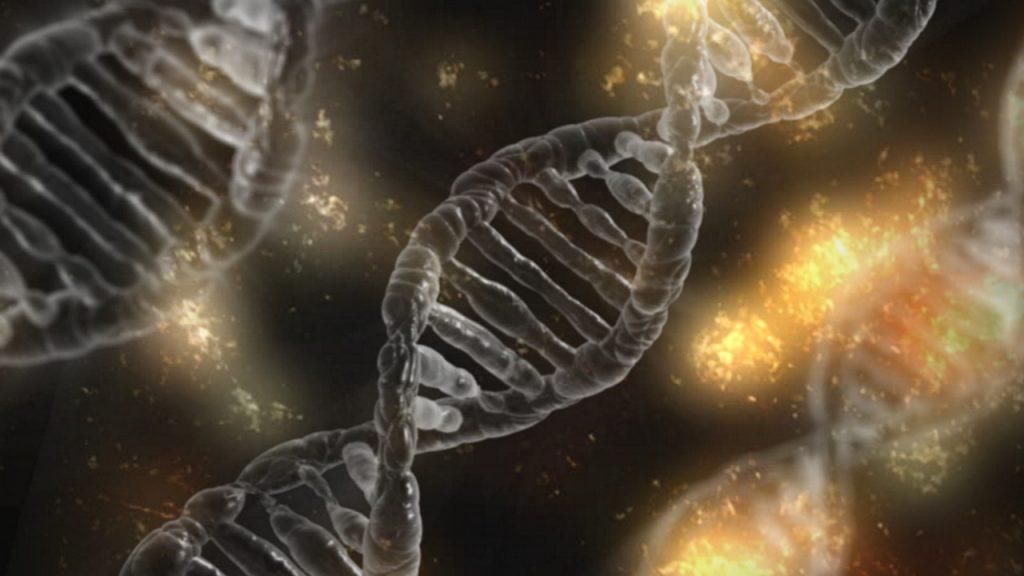 Zingeving zit in je genen